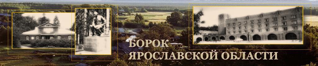 Црб боровского района запись к врачу